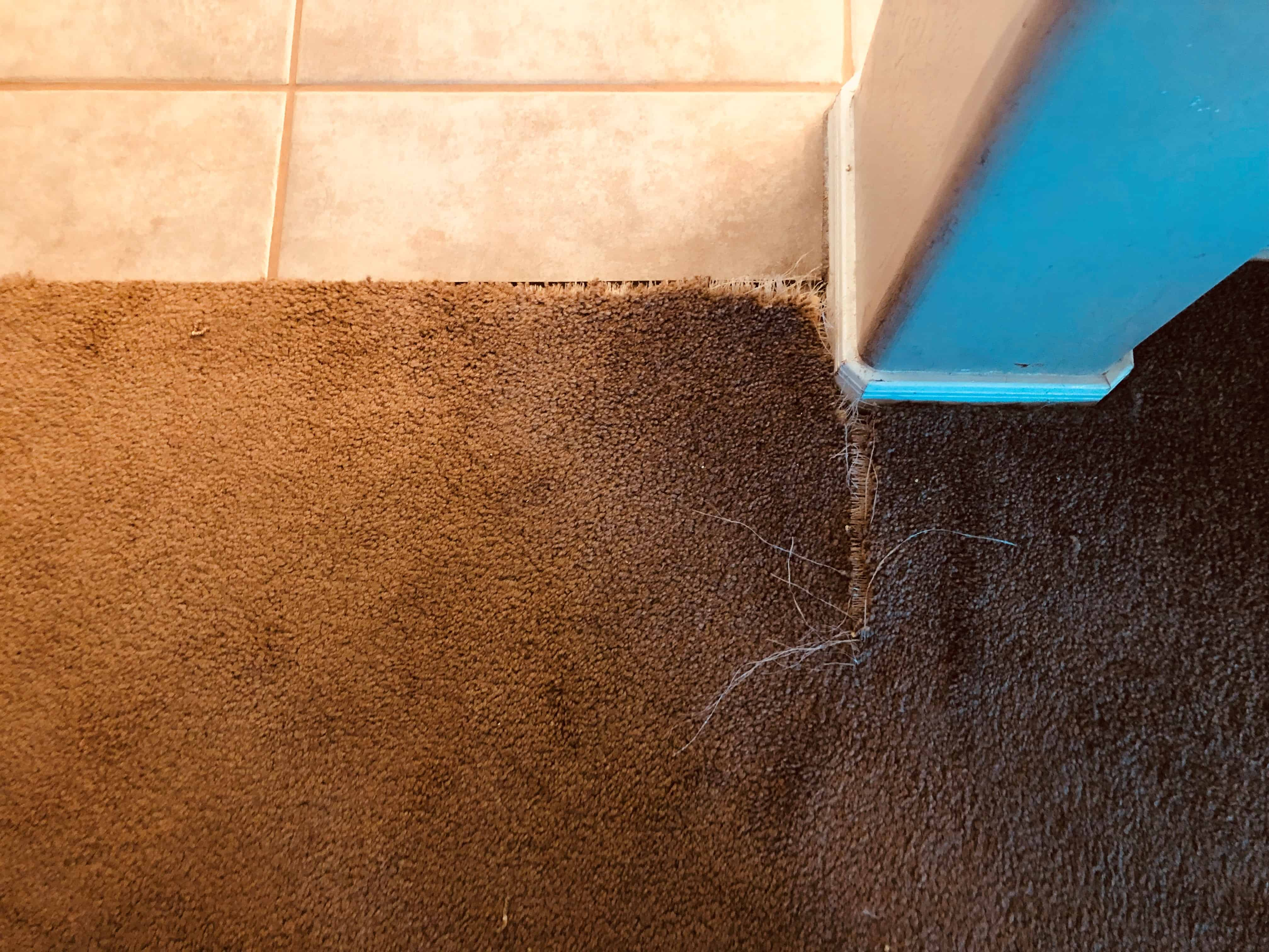 Mesa Az Carpet Repair Phoenix Carpet Repair