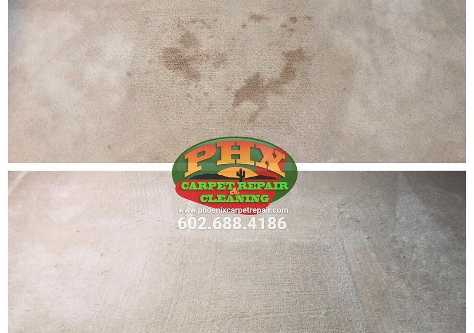 Sun City, AZ: Carpet Repair
