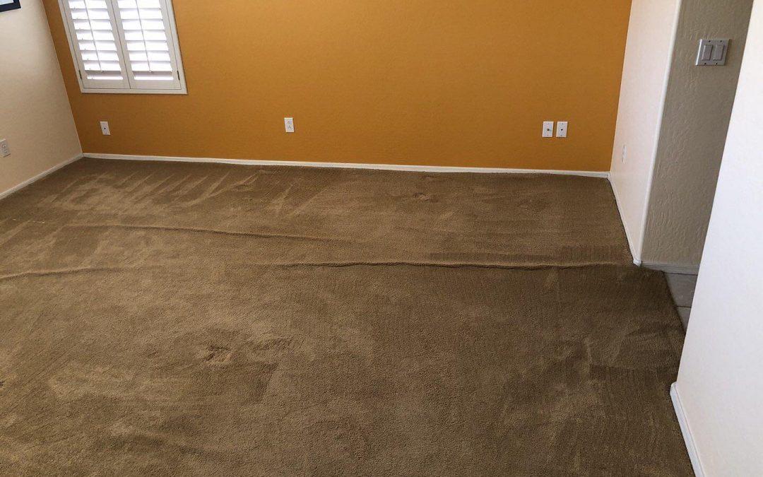 Power Stretching Carpet in Glendale, AZ