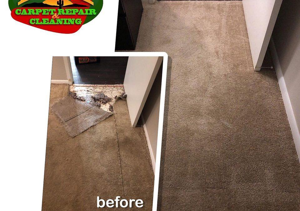 Phoenix Carpet Repair: Water Damage