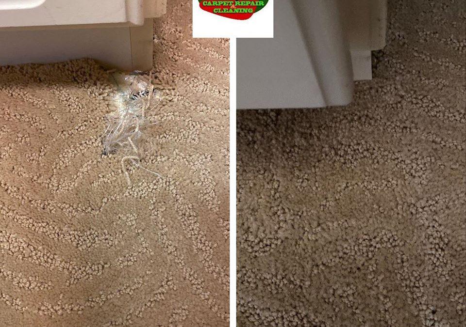 Phoenix, AZ: Patterned Carpet Repair