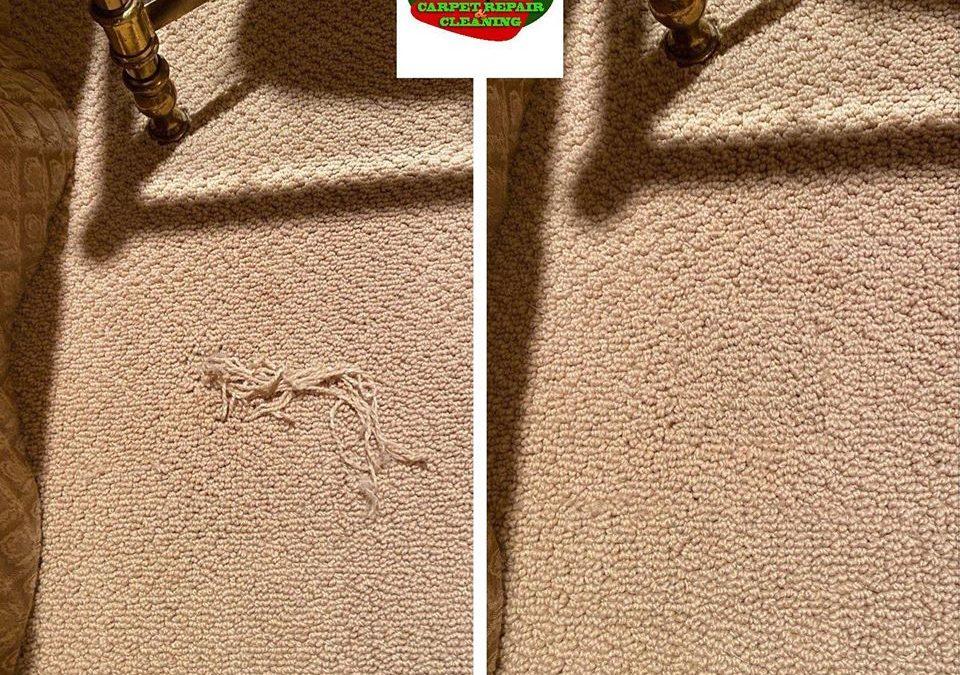 Phoenix, AZ: Berber Carpet Repair