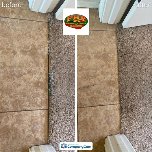 Phoenix, AZ Carpet Repair for Pet Damage