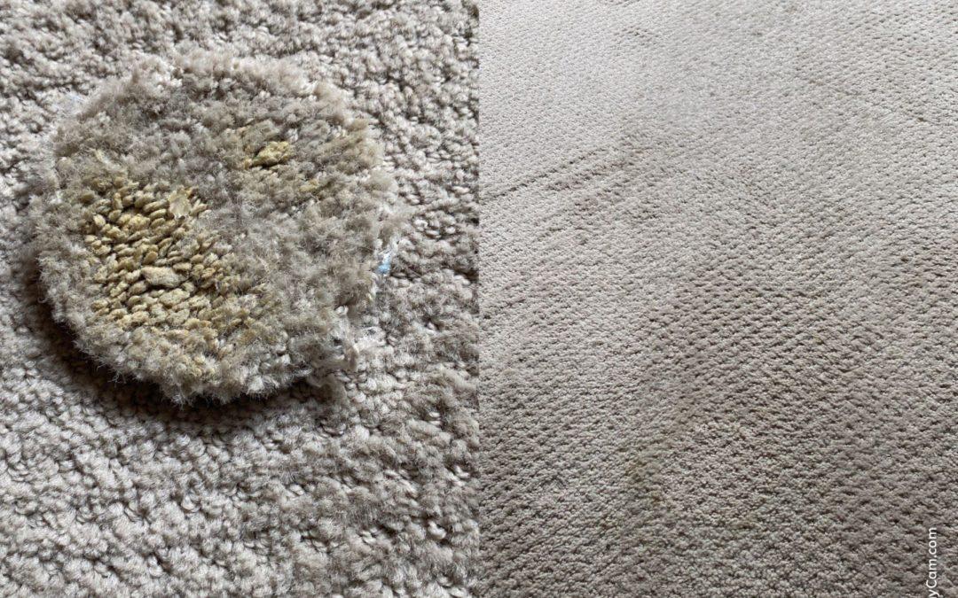 Scottsdale, AZ: Berber Carpet Repair